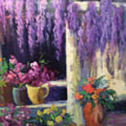 Wisteria Blooms Poster
