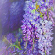Wisteria Elegance By Kaye Menner Poster