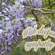 Wisteria Sympathy Card Poster