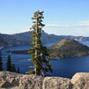 Wizard Island With Rock Fence At Crater Lake Poster
