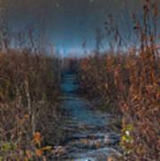 Wolf Road Prairie Trail Poster