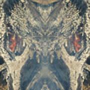 Wolf Spider Poster