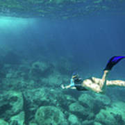 Woman Free Diving Poster
