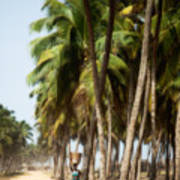 Woman In Ouidah I Poster