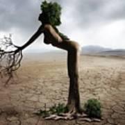 Woman Tree Art Poster
