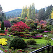 Wonderful Sunken Garden In The Butchart Gardens,victoria,canada 1. Poster