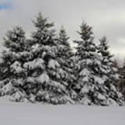 Wonderful Winter Poster
