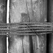 Wood Pilings Tied With Old Rusted Rope Poster
