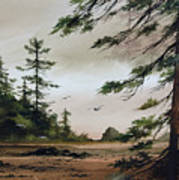 Wooded Shore Poster