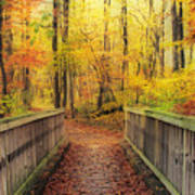 Wooden Bridge   Hdr Poster