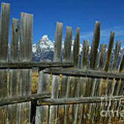 Wooden Fence, Grand Tetons Poster