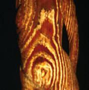 Woodgrain Poster