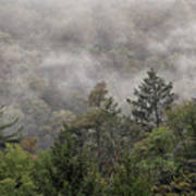 Worlds End State Park Fog Poster