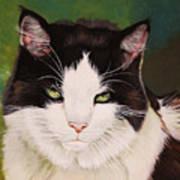 Wozzle - Domestic Cat Poster