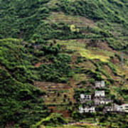 Yangtze Hillside Poster