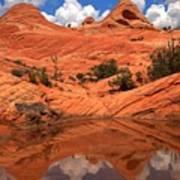 Yant Flat Canyon Reflections Poster