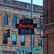 Ye Olde Durty Bird Poster