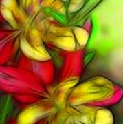 Yellow And Red Columbines Poster