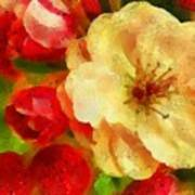 Yellow And Red Floral Delight Poster