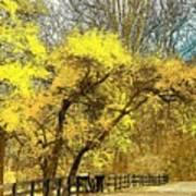 Yellow Bend Poster by Joyce Kimble Smith