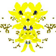 Yellow Blue Blossoms Poster