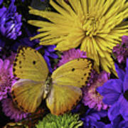 Yellow Butterfly On Bouquet Poster