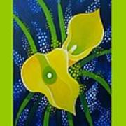 Yellow Callas Poster