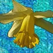 Yellow Daffodil 3 Poster