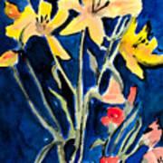 Yellow Daylilies Poster