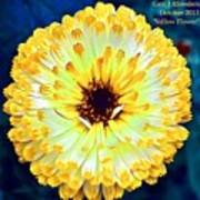 Yellow Flower H A Poster