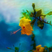 Yellow Flower On Blue Sky Poster