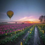 Yellow Hot Air Balloon Over Tulip Field In The Morning Tranquili Poster