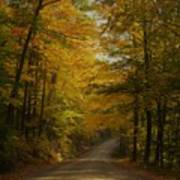 Yellow Leaves Road Poster