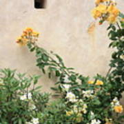 Yellow Roses And Tiny Window At Carmel Mission Poster