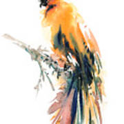 Yellow Wild Bird Poster