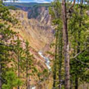 Yellowstone Grand Canyon  Poster