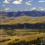 Yellowstone Landscape 2 Poster