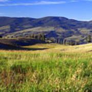 Yellowstone Landscape 3 Poster