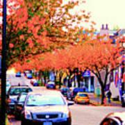 Yew Street Autumn Poster