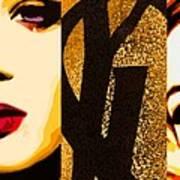 Yls Retrospective  Poster by Lelia DeMello