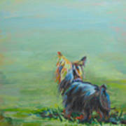 Yorkie In The Grass Poster by Kimberly Santini