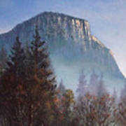 Yosemite Dawn Detail Poster