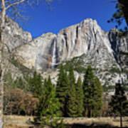 Yosemite Falls Through The Trees Poster