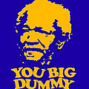 You Big Dummy Poster