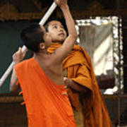 Young Buddhist Monks Laos Poster