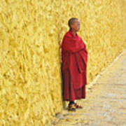Young Monk Against Yellow Wall Poster