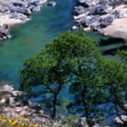 Yuba River In Spring Poster
