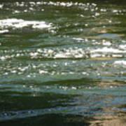 Yuba River Reflections Poster