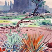 Yucca And Buttes Poster
