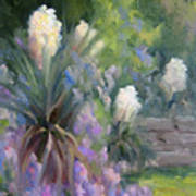 Yucca And Wisteria Poster